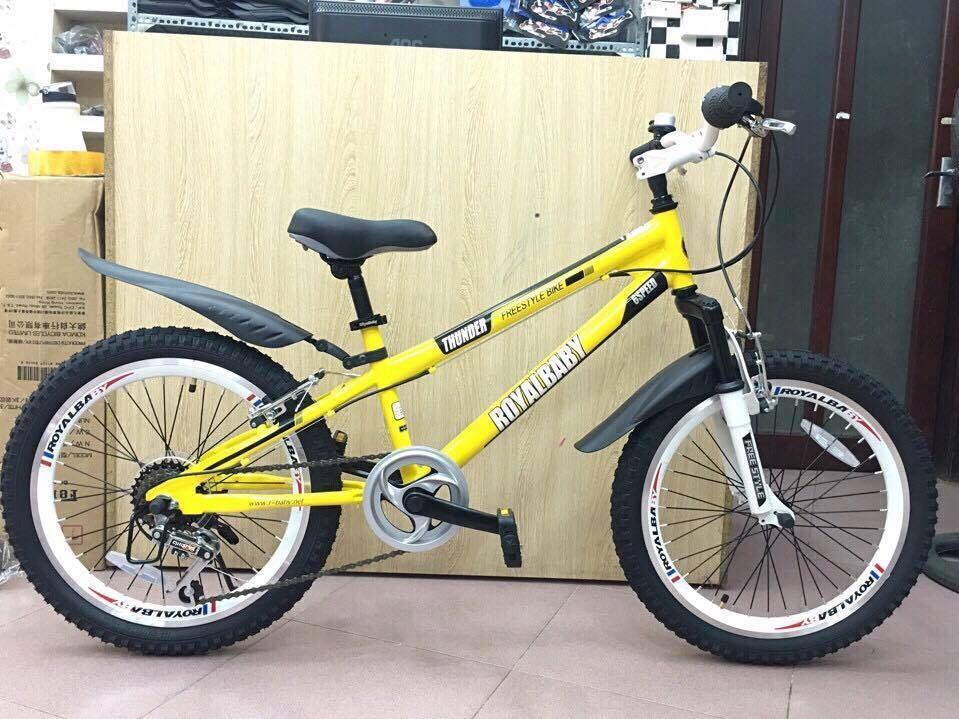 Xe đạp trẻ em RoyalBaby FreeStyle 20b-6s