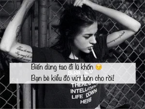 quotes vua hay vua chat ve tinh ban be 14