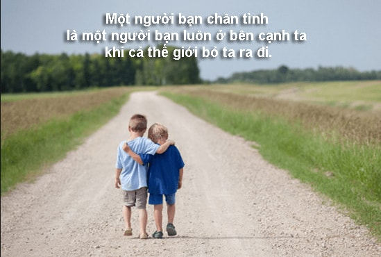 quotes vua hay vua chat ve tinh ban be 22