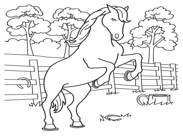 tranh tô màu trang trại ngựa cho bé