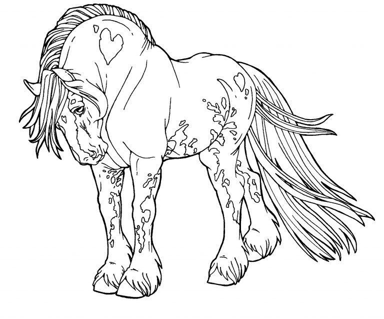 tranh ngựa vân